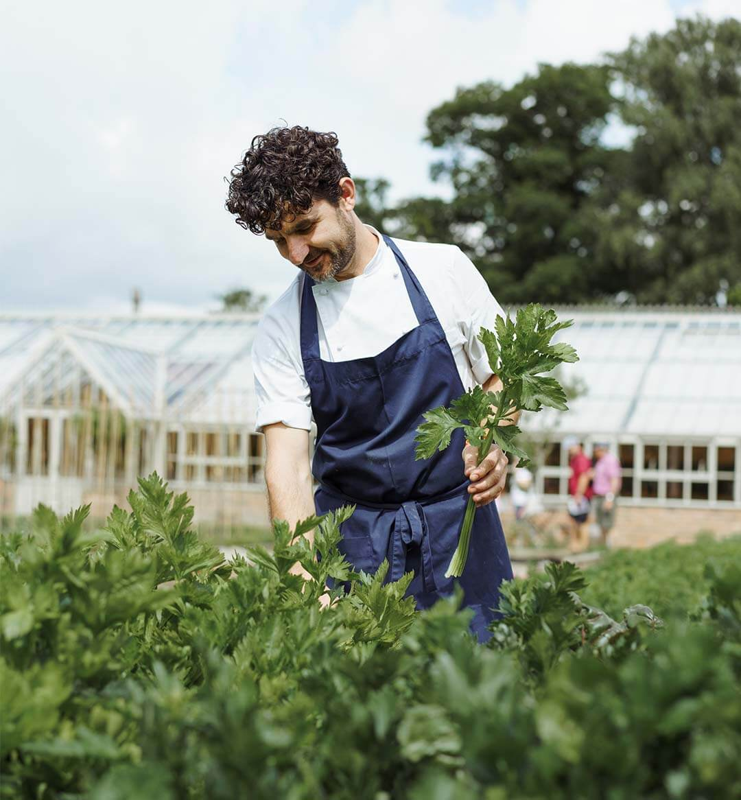 Explore exciting career opportunities from across our estate including marketing, kitchen, gardening and many more. Here at Wynyard Hall we are more than just a place to work, we are a community.