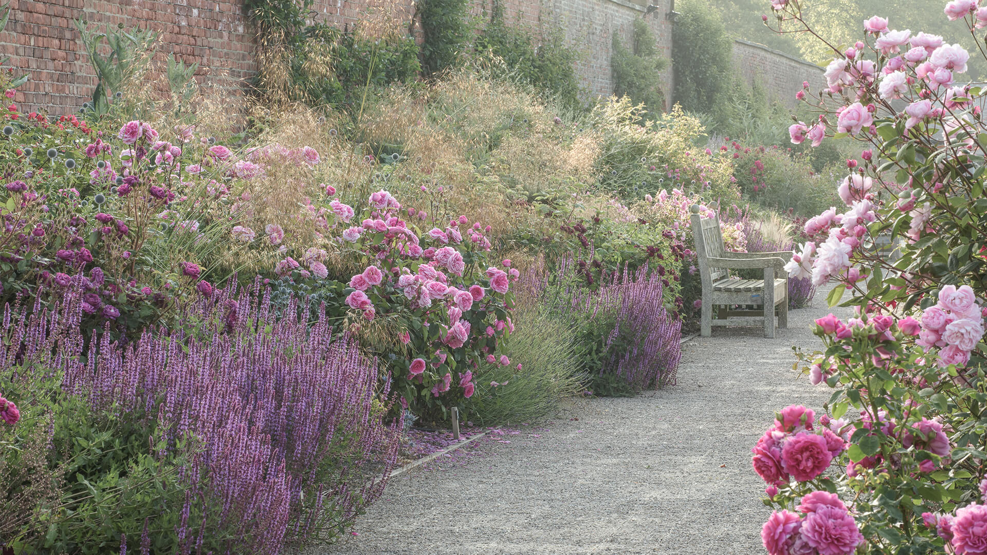 <p>Explore the rose garden and discover 3000 David Austen Roses, bursting with colour, plus a fascinating selection of trees and shrubs, carefully highlighted with graceful water features and meandering paths.</p>